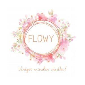 logo-flowy